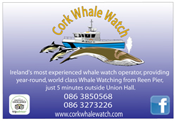 cork-whalewatch